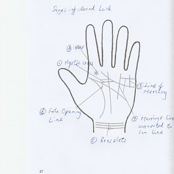 SIX SIGNS SHOWING YOU HAVE A LUCKY PALM: IPHM Blog